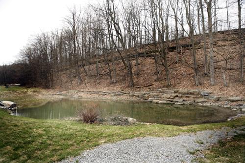 Existing pond- 12-14 feet deep-spring